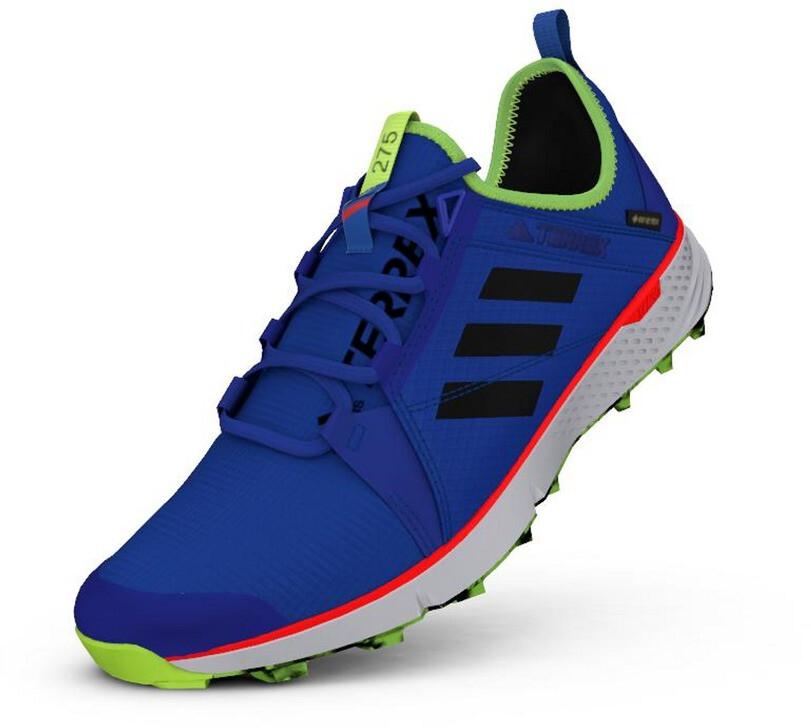 adidas TERREX Speed GTX Schuhe Herren glory bluecore blacksignal green